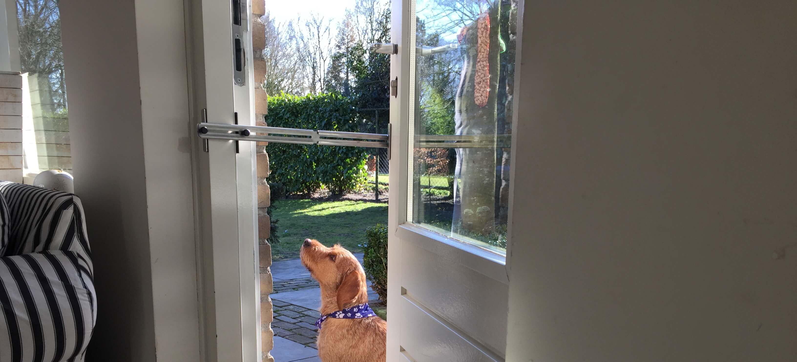 Kierr Classic 200 kierstandhouder om huisdieren naar buiten te kunnen laten lopen.