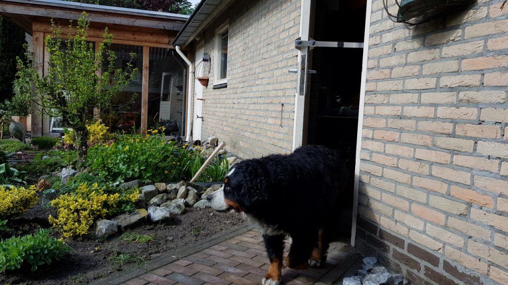 Kierr Flex adjustable doorstop for a dog